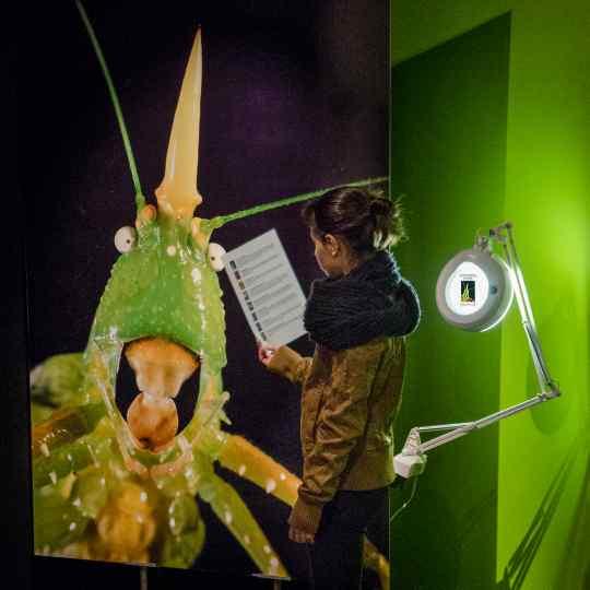 Photographie de Gilles Martin de l'exposition MicroMégas