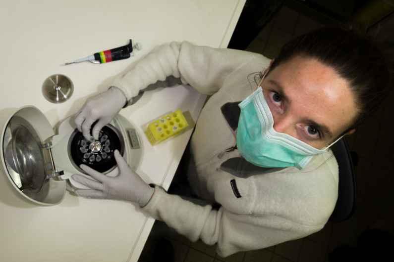 Séquençage d'ADN réalisé sur le Pourquoi Pas ?