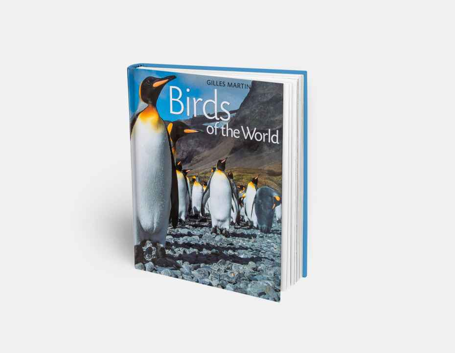 "Livre ""Birds of the world"", disponible sur la boutique en ligne de Gilles Martin"